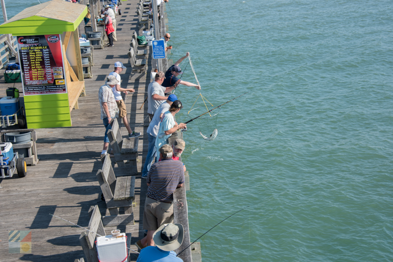 Pier fishing on the Crystal Coast strand