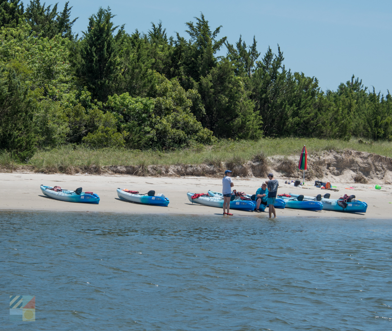 A kayak tour on Rachel Carson Reserve