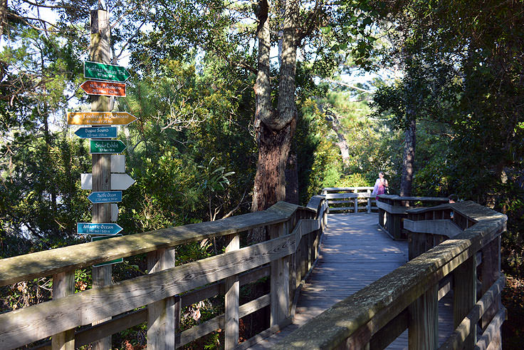 Outdoor nature walk at N.C. Aquarium at Pine Knoll Shores