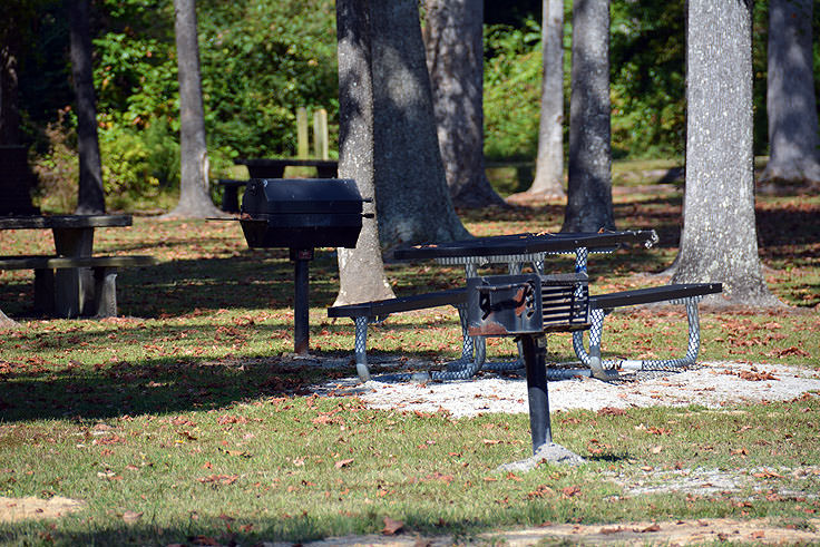 Picnic tables and grill pits at Neuse River Recreation Area