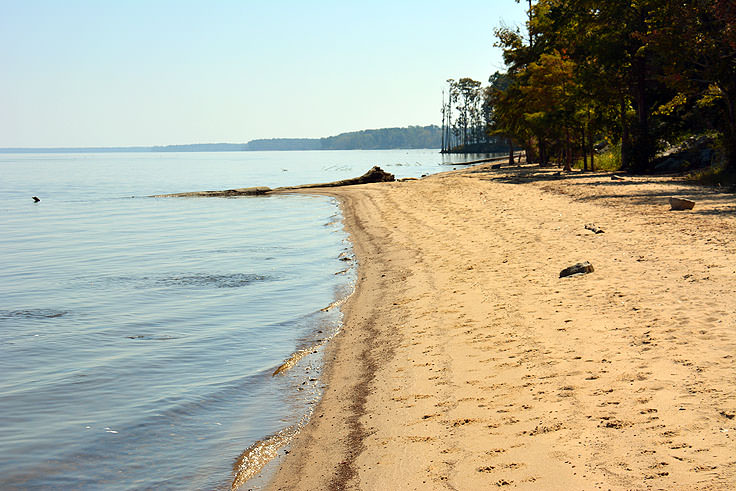 The beach along Neuse River