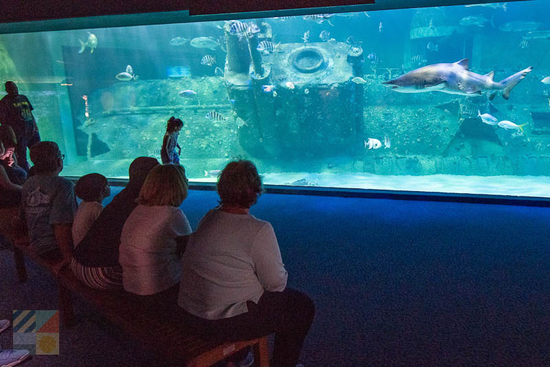 NC Aquarium at Pine Knoll Shores