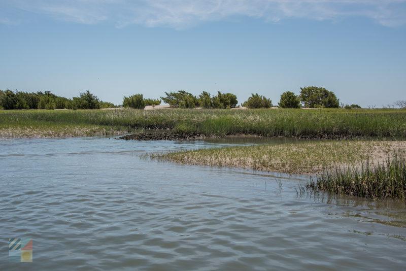 Rachel Carson Estuarine Reserve