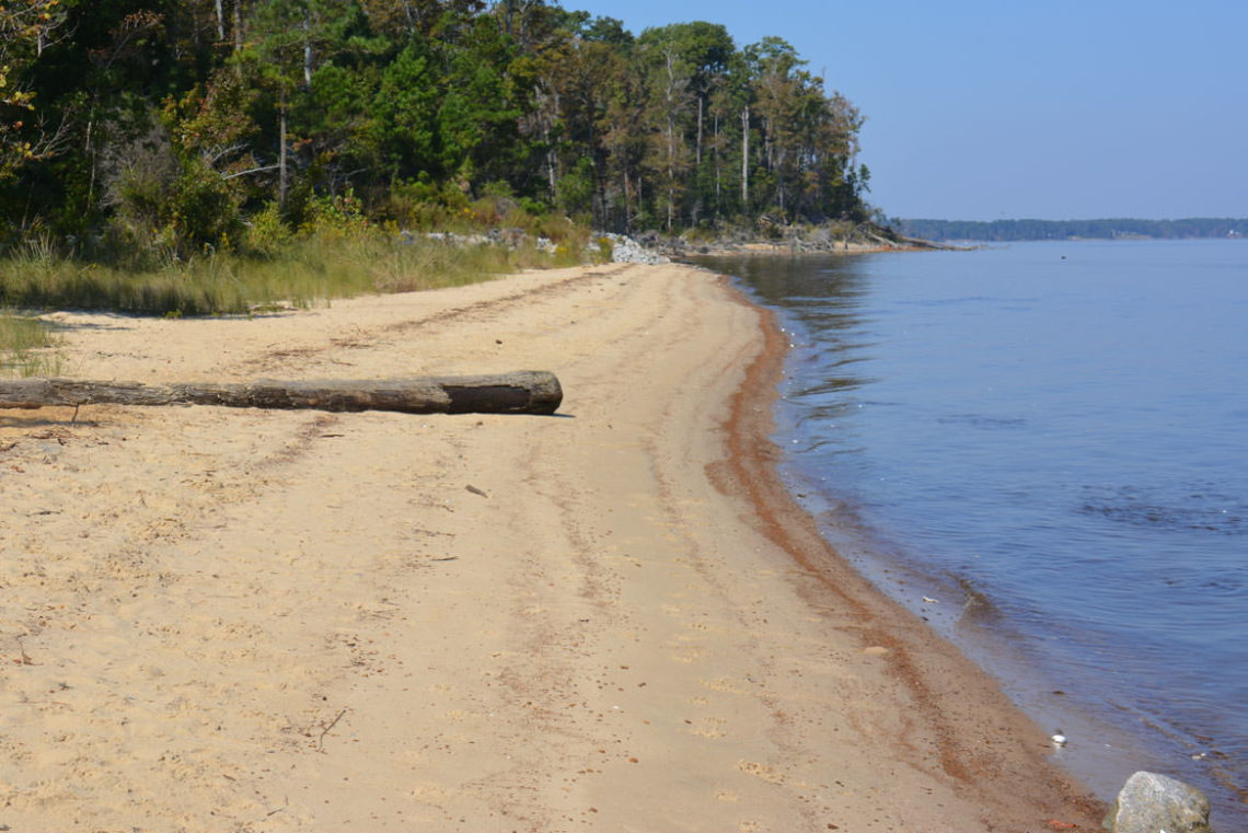 Neuse River Recreation Area
